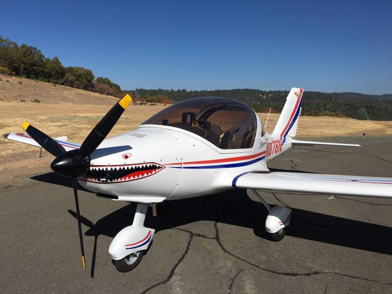 2006 TL Ultralight STING SPORT with Rotax